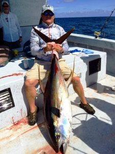 catch Yellowfin Tuna
