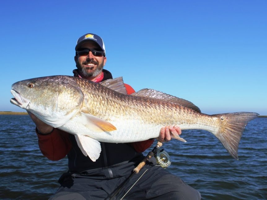 huge redfish caught out of venice la