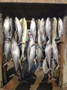 tuna fishing in the gulf