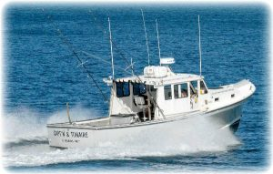 the best charter fishing