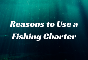Reasons to Use a Fishing Charter